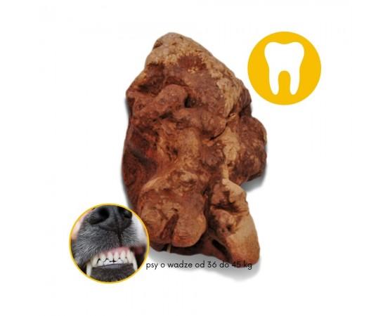 TORGAS® - naturalny BIO gryzak L dla psów o wadze od 36 - 45 kg