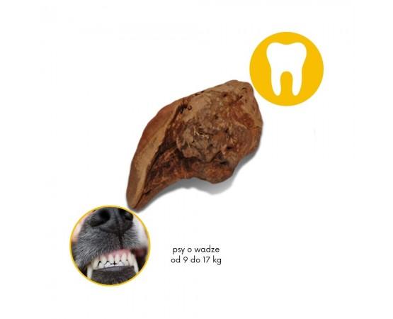 TORGAS® - naturalny BIO gryzak dla psów S o wadze od 9 do 17 kg