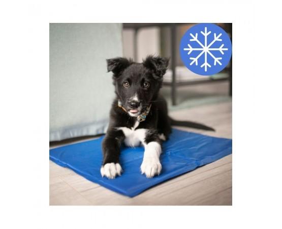 Mata chłodząca dla psa 40x50 cm Pet Supplies