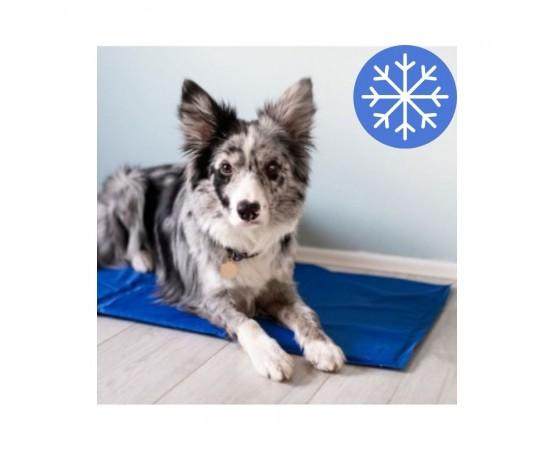 Mata chłodząca dla psa 50x90 cm Pet Supplies