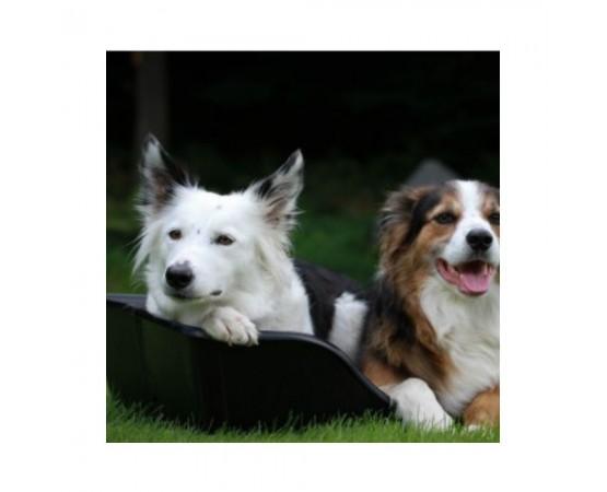 Składane, wodoodporne legowisko z poduchą dla psa 55 x 36 cm Pet Supplies