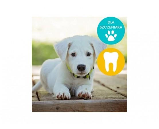 Gryzaki dentystyczne dla szczeniaka M/L 7 szt. - WHIMZEES DENTAL PUPPY