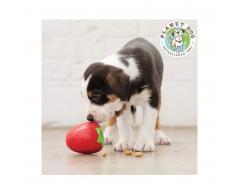 Piłka zabawka dla psa na smaczki truskawka 7,5 cm Planet Dog