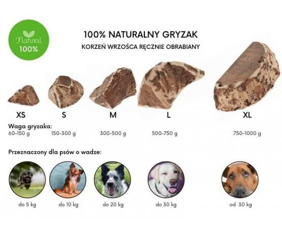 Korzeń wrzośca naturalny BIO gryzak M przeznaczony dla psów o wadze do 20 kg Ferribiella Erica Root