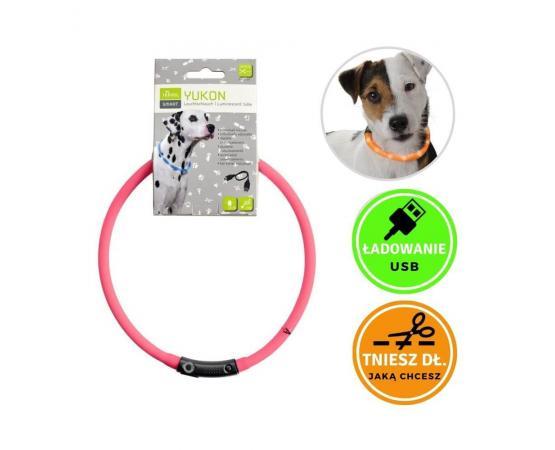 Obroża świecąca dla psa - silikonowa, LED, USB, różowa - Hunter Yukon