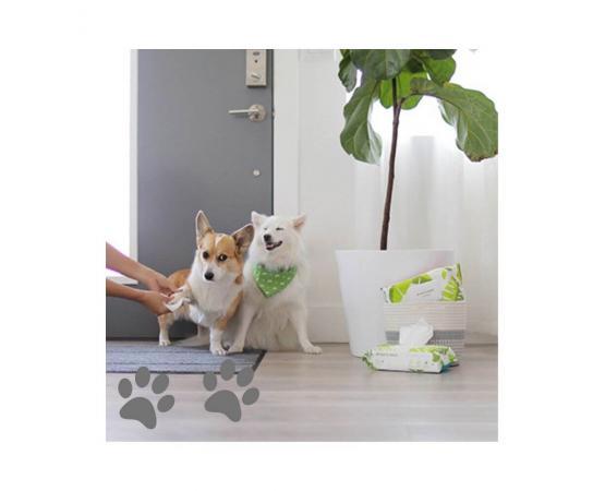 Chusteczki do czyszczenia psich i kocich łap - 100 sztuk - Earth Rated